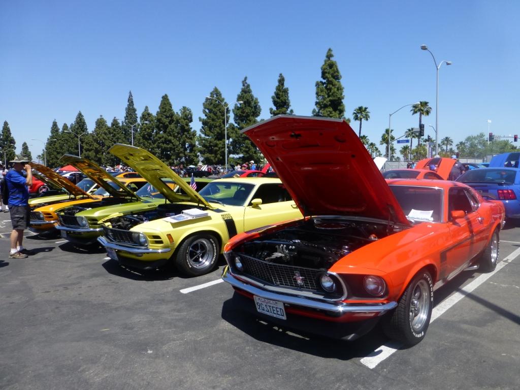 フォード マスタングたち Ford Mustangs